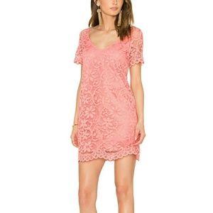 ❤ NWT BB DakotaRene V-Neck Lace Shift Dress